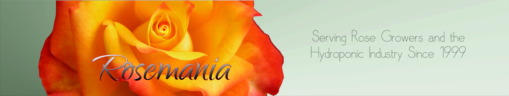 Rosemania_Header_left_side_flatten